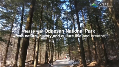 Attractions in Odaesan National Park